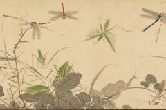 Yamamoto-Baiitsu1