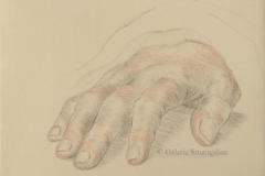 Étude de main d'après Holbein025