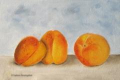 Les abricots008