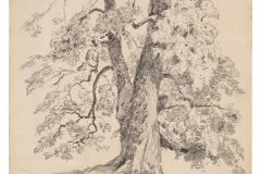 John Singer Sargent051