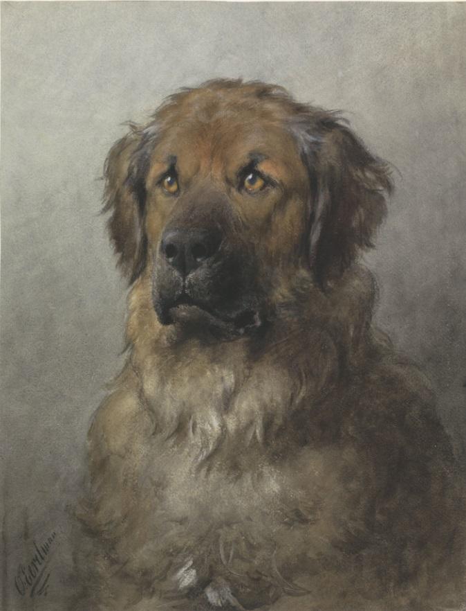Otto Eerelman092