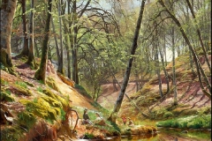 Peder Mork Monsted058