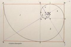 A partir du rectangle d'or ADBC :Le segment EF forme le carré 1 et le rectangle suivant EDFC Le segment GH forme le carré 2 et le rectangle suivant EDGHLe segment IJ forme le carré 3 et le rectangle EIGJLe segment KL forme le carré 4 et le rectangle KLGJLe segment MN forme le carré 5 et le rectangle MNLJLe segment OP forme le carré 6 et le rectangle MLOPLe segment QR forme le carré 7 et le rectangle MQOR Tous ces nouveaux rectangles formés en soustrayant un carré dont le côté est la largeur du rectangle précédent sont des rectangles d'or et ils sont homothétiques.Pour tracer la spirale, déplacer la pointe du compas dans chaque carré :carré 1-->centre E rayon EAcarré 2-->centre G rayon GFcarré 3 --> centre J rayon JHcarré 4 --> centre L rayon LIcarré 5 --> centre M rayon MKcarré 6 --> centre O rayon ONcarré 7 --> centre R rayon RP