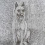 dessin, chien