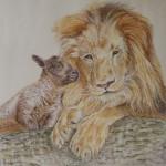 agneau, dessin, lion